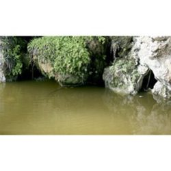 av26230 Still Water Aguas Tranquilas Liquido cristalino que se extiende y se autonivela, formando una película transparente y dura. Perfecto para charcos, estanques, canales y lagos. Presentación: En tarros de 200 ml.