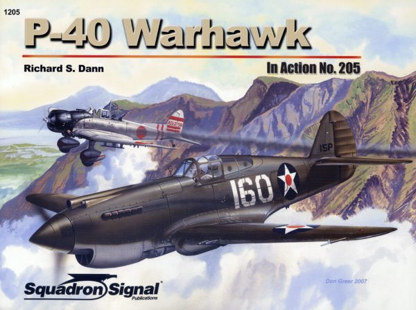 sq1205 P-40 Warhawk In action