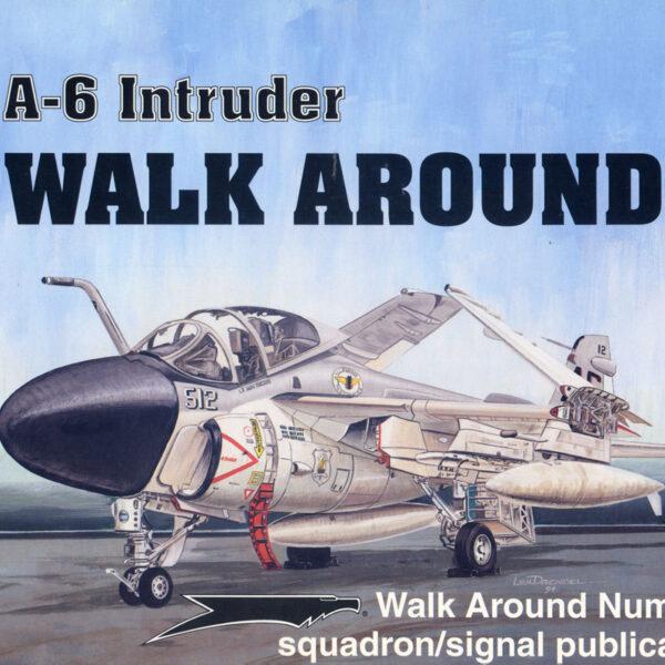 Walk Arround: A-6 Intruder