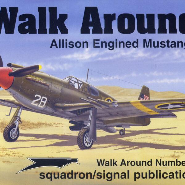 Walk Arround: Allison Engine Mustangs