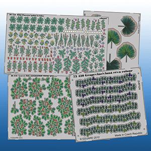 Plantas en Fotograbado