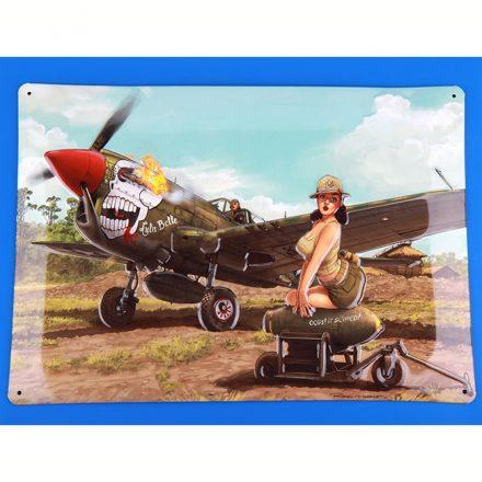 eduard 11104 P-40Neduard 11104 P-40N WARHAWK WARHAWK