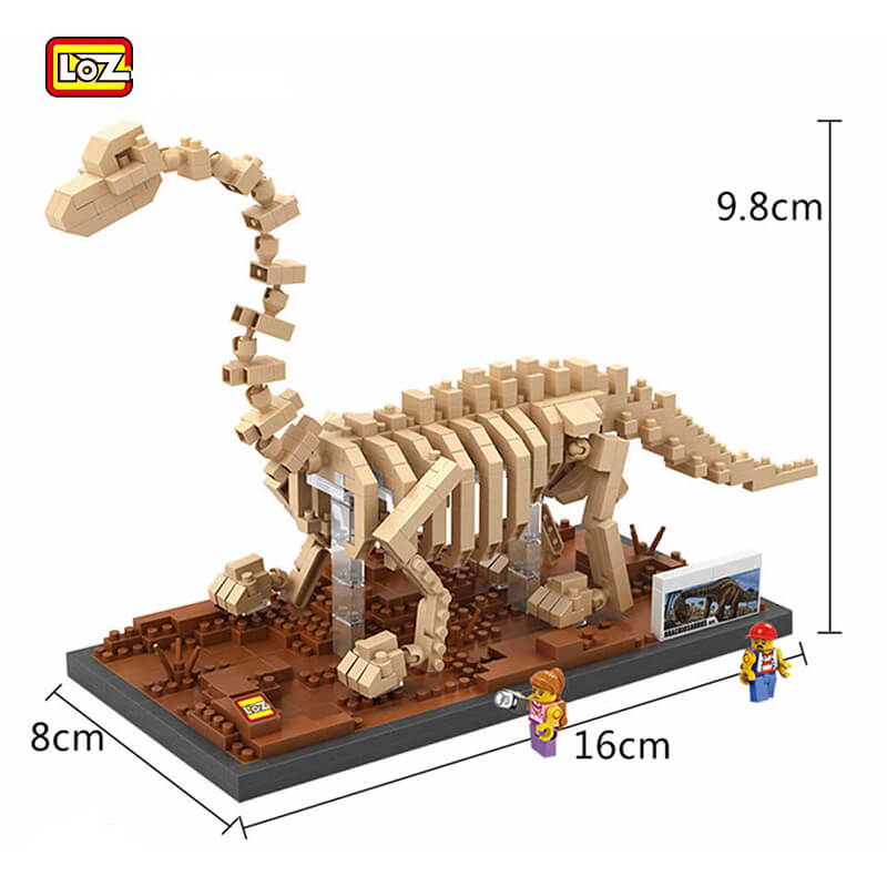 Jurassic World Fósil de Dinosaurio Brachiosaurus - Mister Model